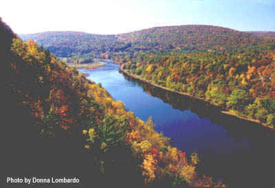 A complete information resource on Port Jervis, NY 12771 © 2019